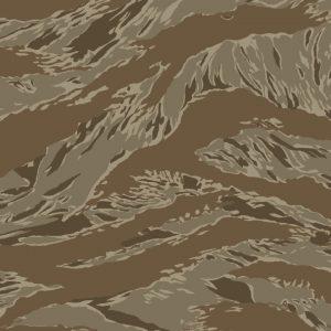 Tiger Stripe Desert